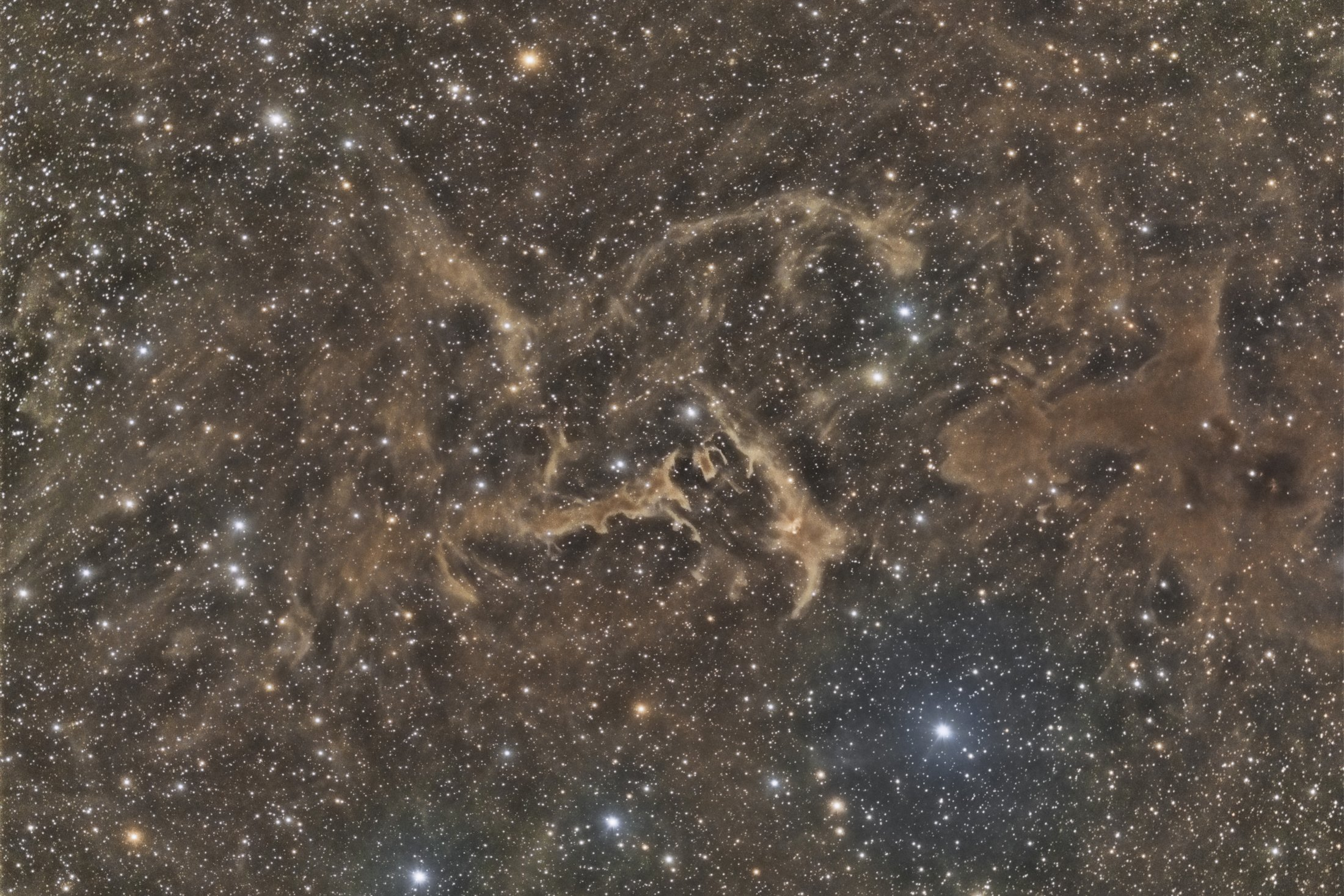 LBN 552 molecular clouds in Cepheus