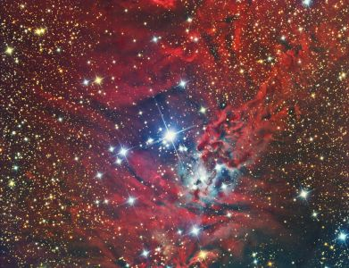 NGC 2264 Cone Nebula and the Christmas Tree Cluster