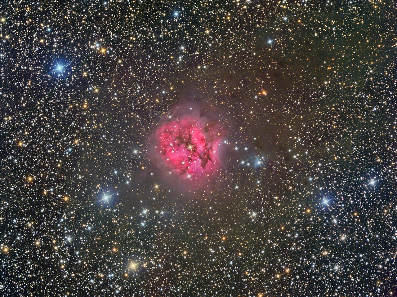 IC5146s