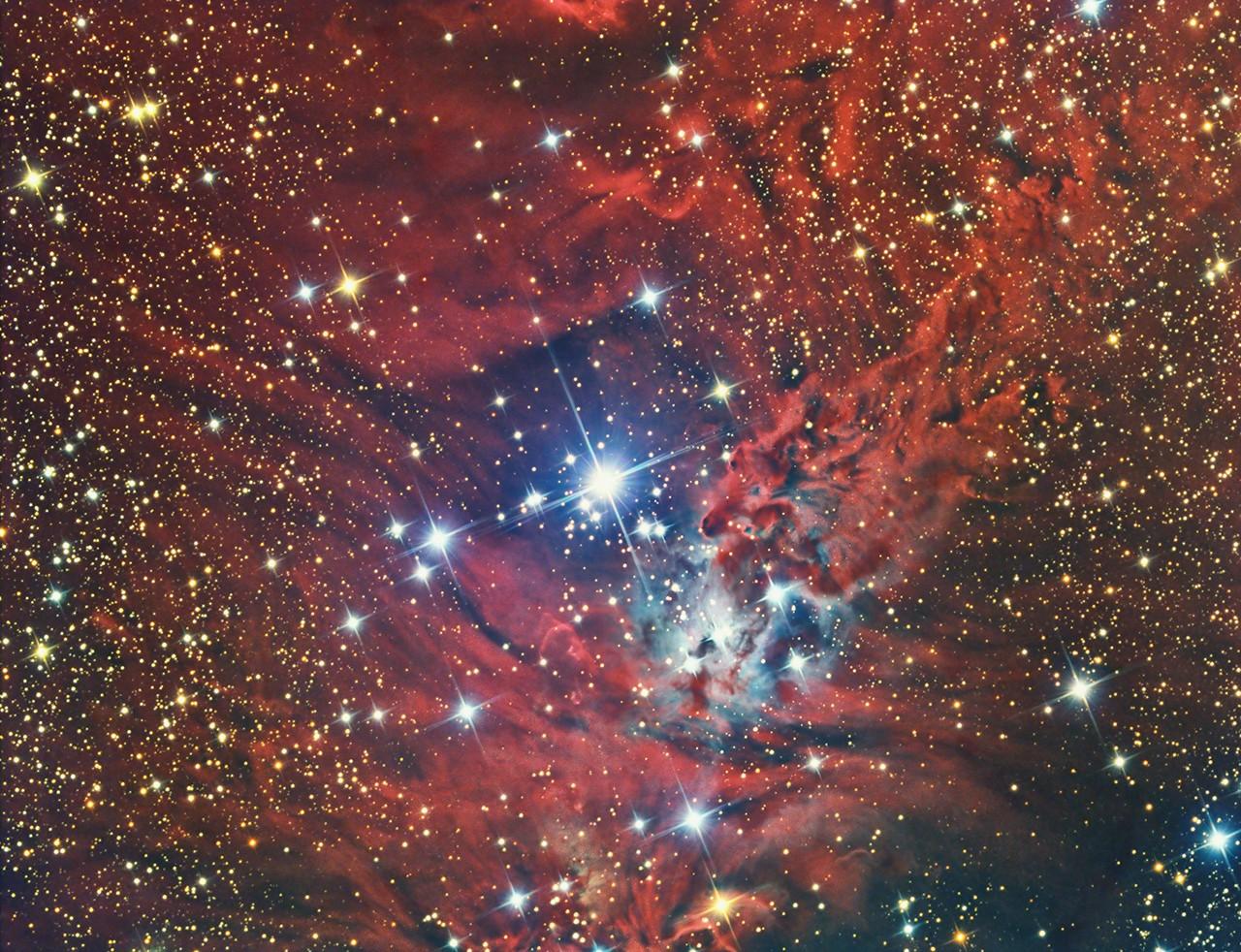 NGC2264s
